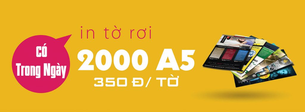 banner-to-roi-22.6-1-1024×377