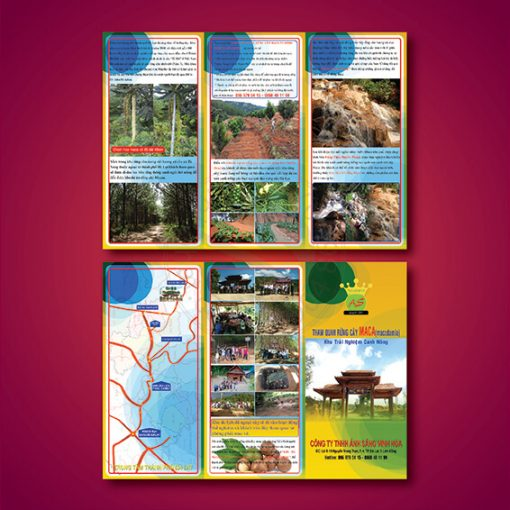 invinhphat-in-to-roi-to-gap-brochure-5